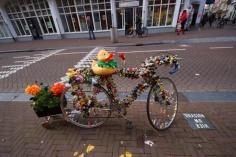 1.1412790104.rubber-duck-bike