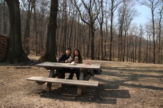 1.1426921544.picnic-in-the-woods