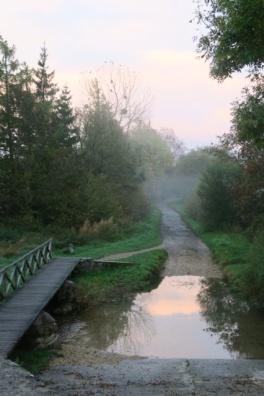 3.1444667374.misty-morning