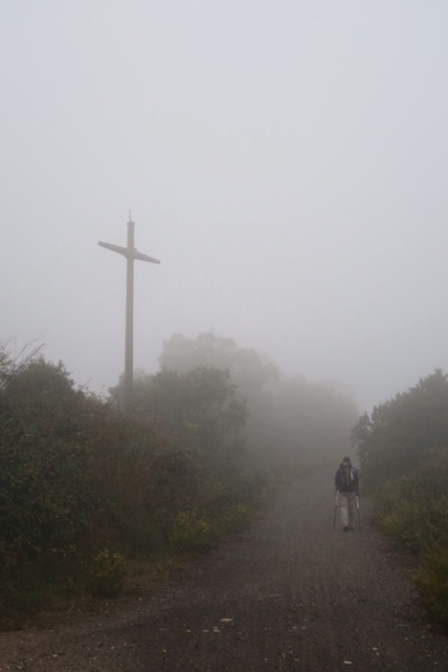 3.1445191072.1-misty