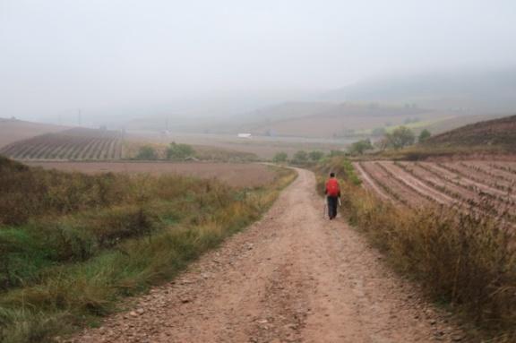 3.1445258453.walking-through-the-mud