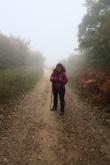 3.1445436411.walking-through-the-mist