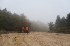 3.1445436411.walking-through-the-mud