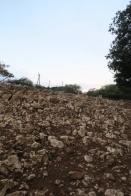 3.1445517078.stony-path