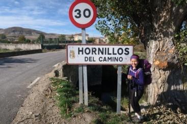 3.1445617980.hornillos